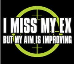 Miss the ex 2